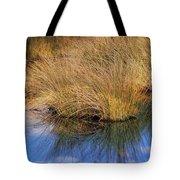 Sawgrass Tote Bag