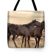Saying It Softly Tote Bag