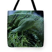 Scales Two Tote Bag