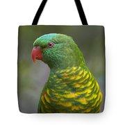 Scaly-breasted Lorikeet Australia Tote Bag