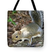 Scampering Squirrel Tote Bag