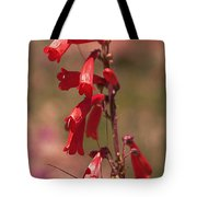 Scarlet Colorado Penstemons Tote Bag