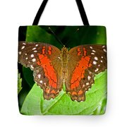 Scarlet Peacock Butterfly Tote Bag