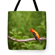 Scarlet Tanager On Snag Tote Bag