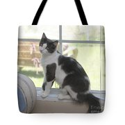Scarlow Sitting In The Window Tote Bag