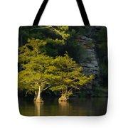 Scenic Beavers Bend Tote Bag