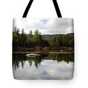 Scenic Lily Pond Tote Bag
