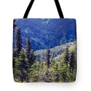 Scenic Mountain Valley Tote Bag
