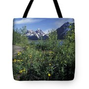 Scenic View In Autumn Of Eklutna Lake & Tote Bag