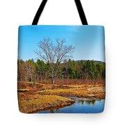 Scenic Winchester Tote Bag