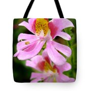 Schizanthus Named Angel Wings Tote Bag