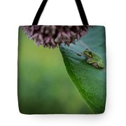 Schlitz Audubon Tree Frog Tote Bag