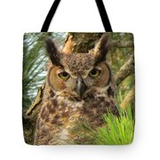 Scholarly Tote Bag