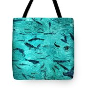 School Of Fishes In The Transparent Water Tote Bag
