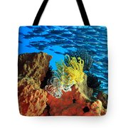 School Of Fishes Tote Bag