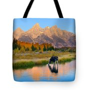 Schwabacher Morning Light  Tote Bag