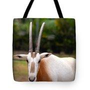 Scimitar Horned Oryx 2 Tote Bag
