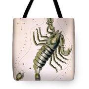Scorpio Constellation  1825 Tote Bag
