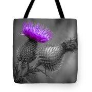 Scotland Calls 1 Tote Bag