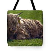 Scottish Highland Cattle 3                          Tote Bag