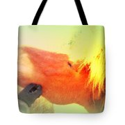 scratch me now and I will carry you anywhere later on  Tote Bag