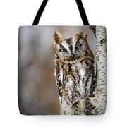 Screech Owl Checking You Out Tote Bag