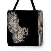 Screech Owl Feeding Owlets Tote Bag