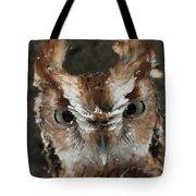 Screech Owl Portrait Tote Bag
