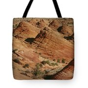 Sculpted Colorado Sandstone Paria Canyon Tote Bag