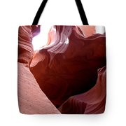 Sculptured Stone Tote Bag