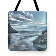 Sculptures On The Shore Tote Bag