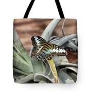 Sea Blue Butterfly Two Tote Bag