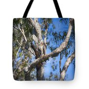 Sea Eagle Vantage Point Tote Bag