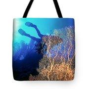 Sea Fans 2 Tote Bag