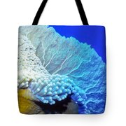 Sea Fans 7 Tote Bag