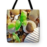 Sea Glass And Shells 17 10/2 Tote Bag