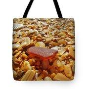 Sea Glass And Shells 3 10/13 Tote Bag