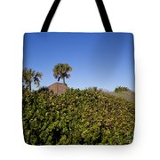 Sea Grapes On A Florida Sand Dune Tote Bag