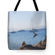 Sea Gull 2 Tote Bag