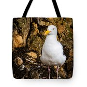 Sea Gull Tote Bag