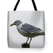 Sea Gull On The Dock On A Foggy Day Tote Bag