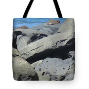 Sea Life 3 Tote Bag