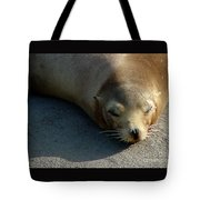 Sea Lion-00178 Tote Bag