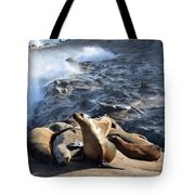 Sea Lions Seek Shelter Tote Bag