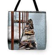 Sea Lions Sleeping Tote Bag by Robert Bales