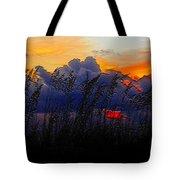 Sea Oat Sunset Tote Bag
