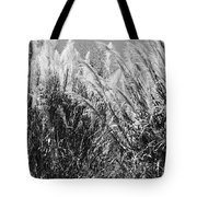 Sea Oats In The Glades Tote Bag