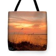 Sea Oats Sunset  Tote Bag