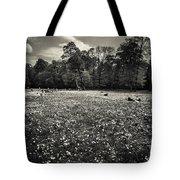 Sea Of Dandelion - Bw Tote Bag