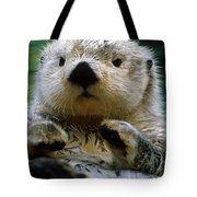 Sea Otter Swimming At Tacoma Zoo Captive Tote Bag